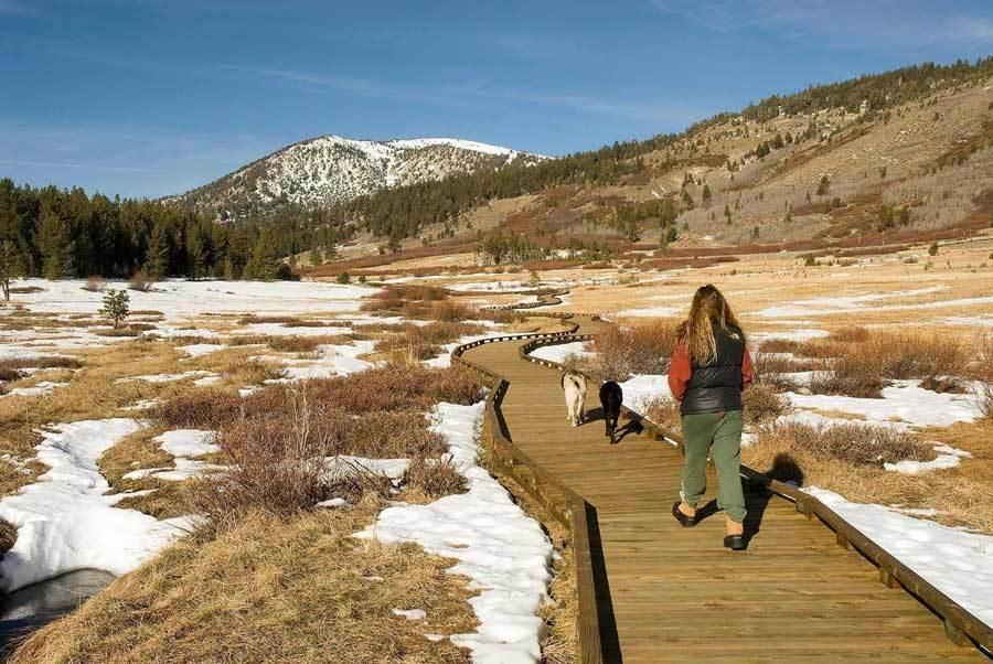 Tahoe Meadows People Walking