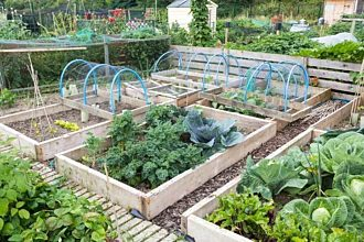 040419-Raised-vegetable-beds