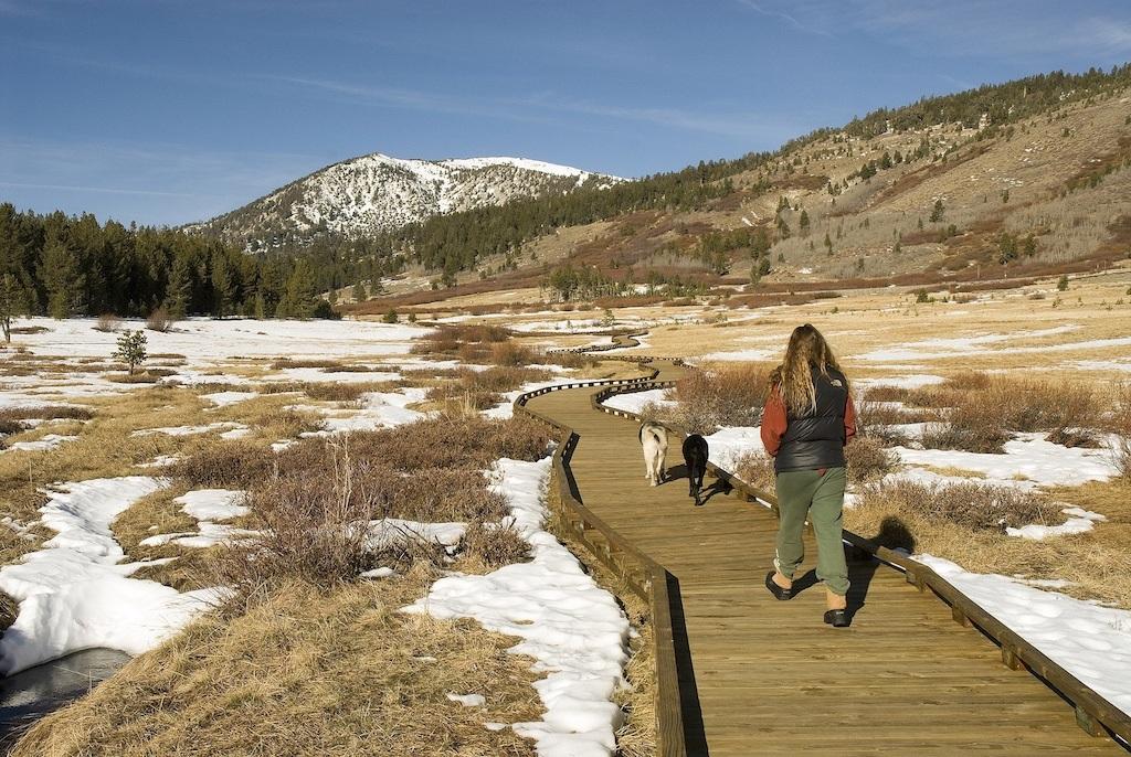 Tahoe Meadows People Walking 401Kb